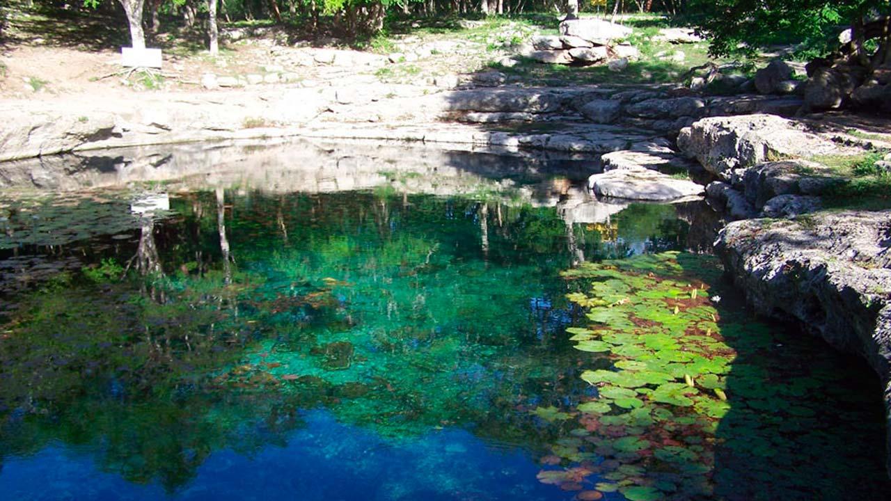 Cenote-Xlacah-en-Dzibilchaltun-5